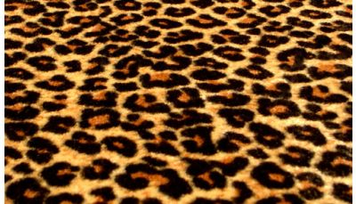 Personal business card leopard print custom printing request personal personal business card leopard reheart Image collections